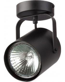 Deckenlampe Deckenleuchte Spot Modern Metall Flesz E27 1-flg Schwarz 31065